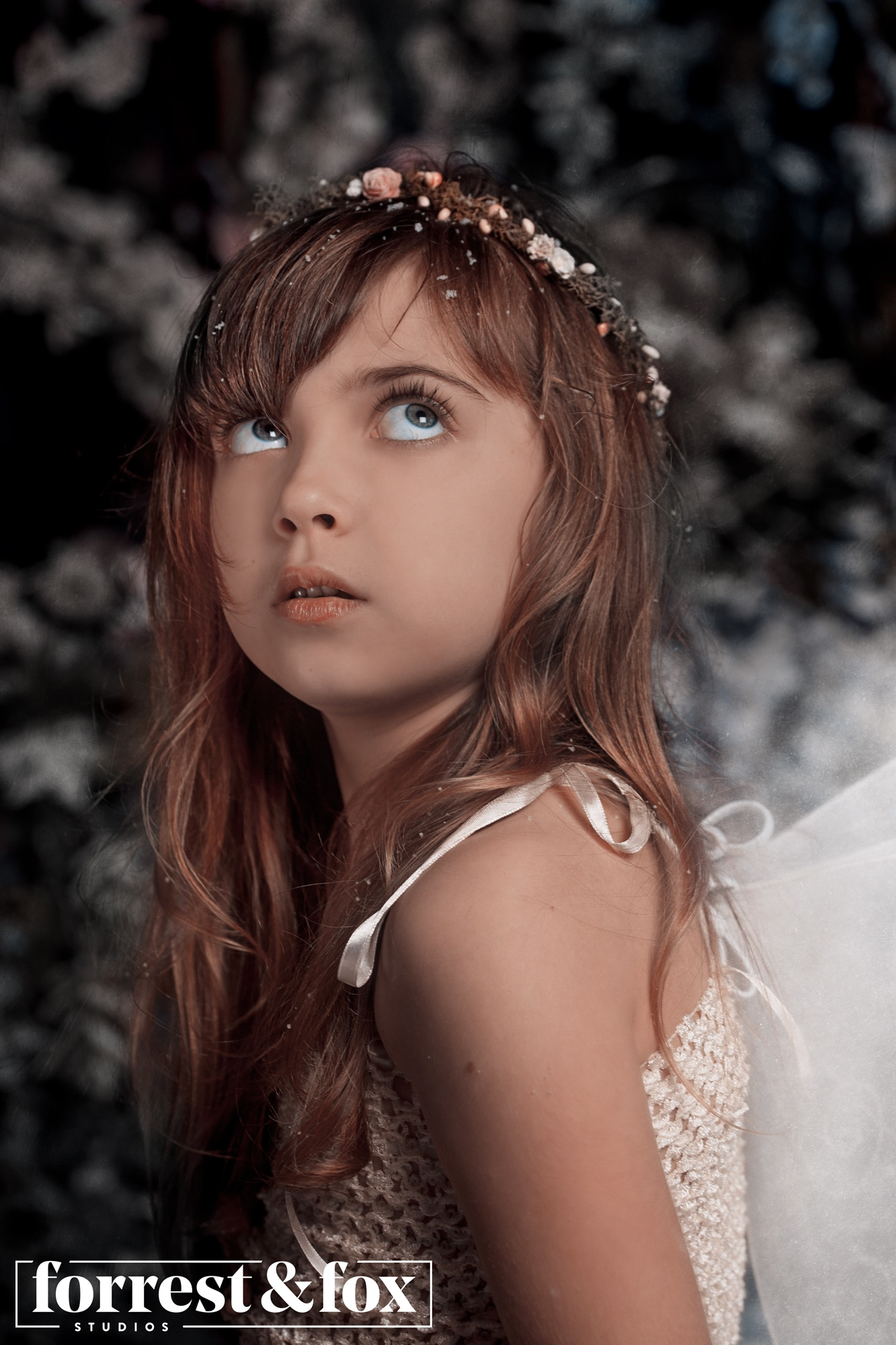 Snow Fairies