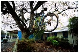 Flying bikes