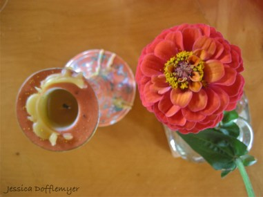 flower_ariel