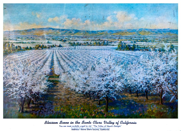 "Blossom scene in ""The Valley of Heart's Delight"""