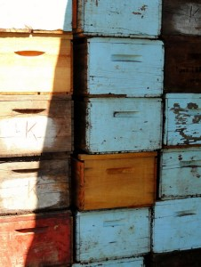 Fruit boxes at Novakovich Orchards