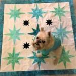 paperpieced quilt