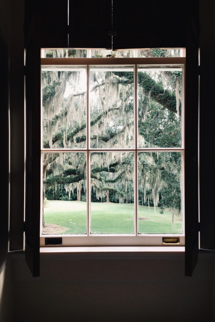 Louisiana Window | for the love of the south