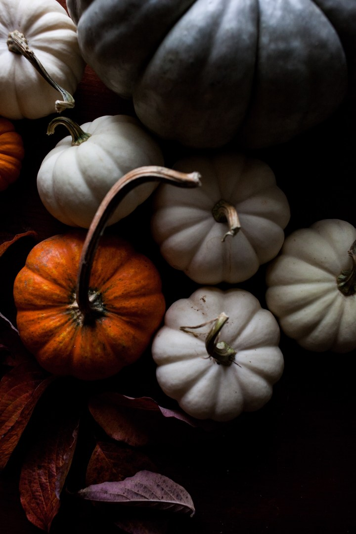 Fall Pumpkins | for the love of the south