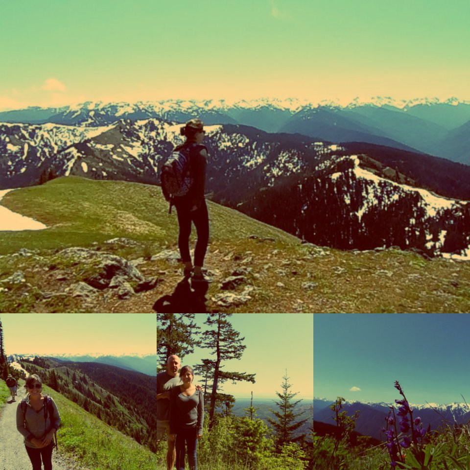 Olympic Mountains collage