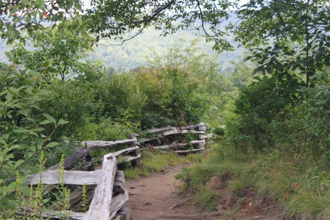 Graveyard Fields Trail