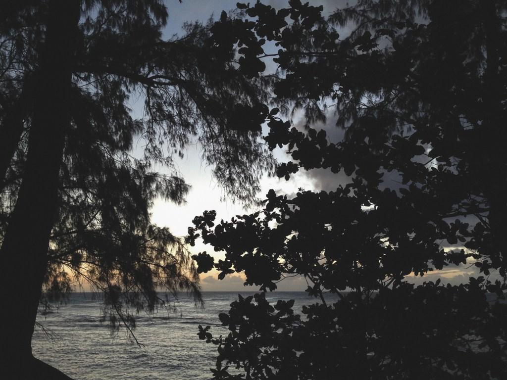 KeeBeachKauai (12 of 12)