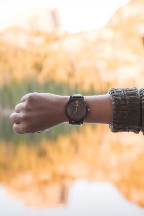 jord-wood-watch-1-of-1