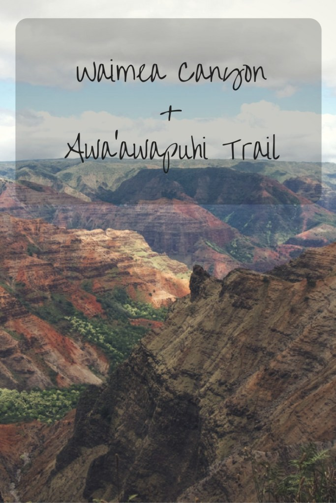 waimea-canyon-awaawapuhi-trail