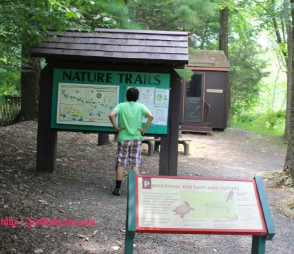 Dinosaur State Park 8