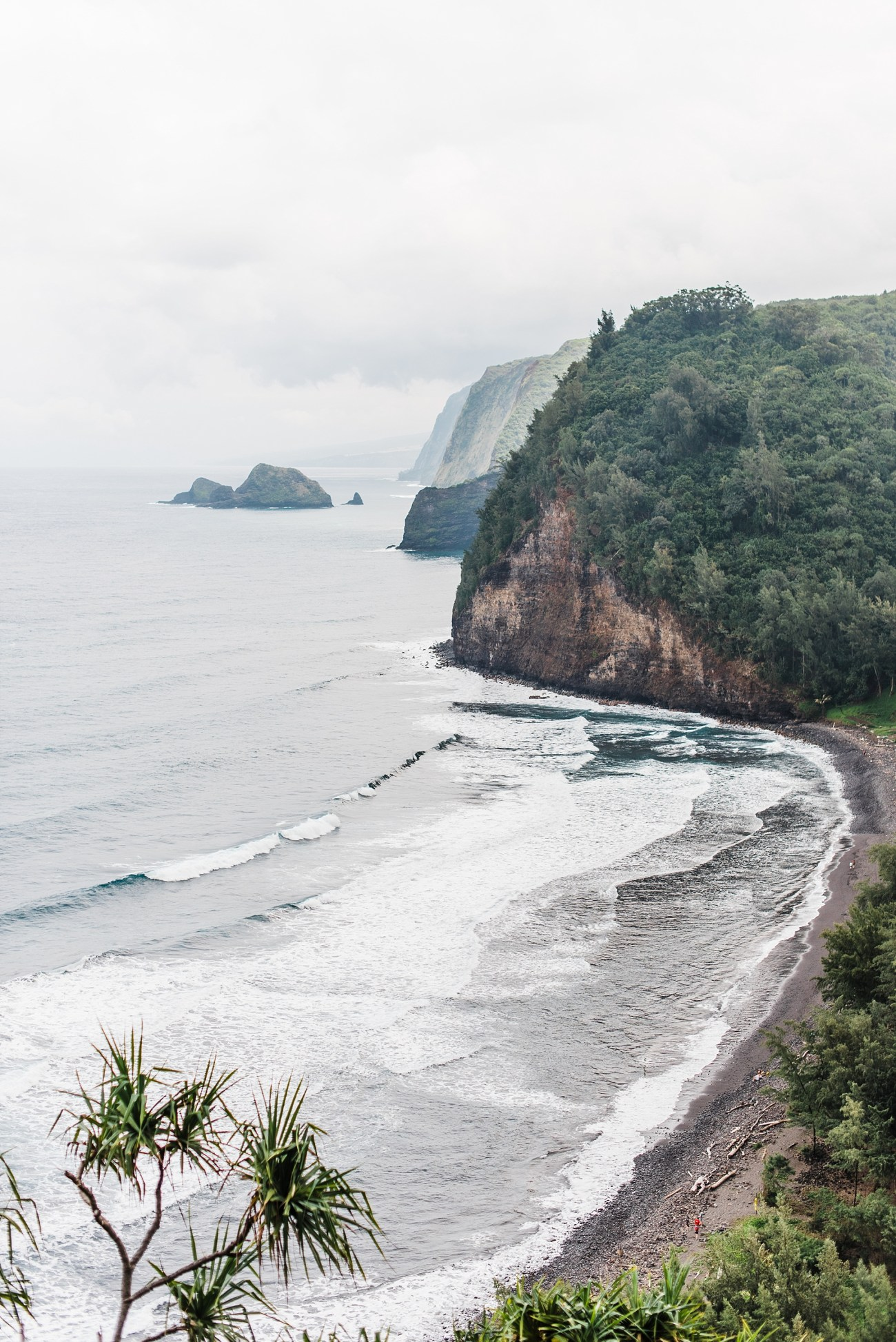 Photo of the Pololu Valley Beach taken from the trail by Laura Lango of Forthright Photo