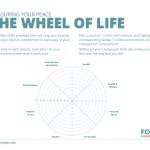 The Wheel Of Life Fortis Leadership