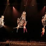 Discount for 'Corteo' from Cirque du Soleil
