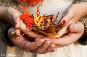 Ring in leaves