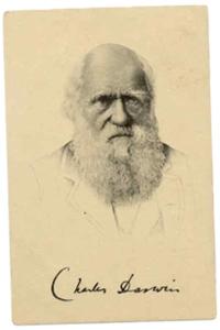 darwincard