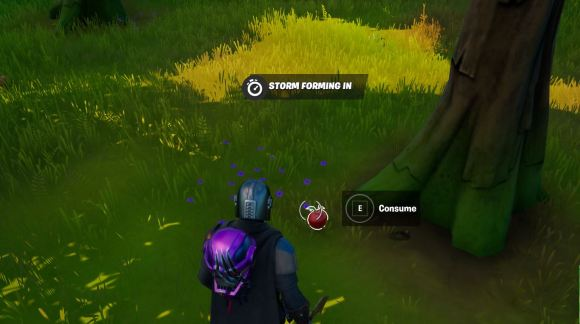 Fortnite Use food consumables