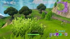 bush-screenshot-6