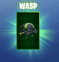 wasp-glider-3