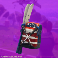 Alpine Accessories (USA) Skin