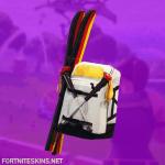 Mogul Ski Bag (GER) Skin