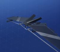 split-wing-skin-2