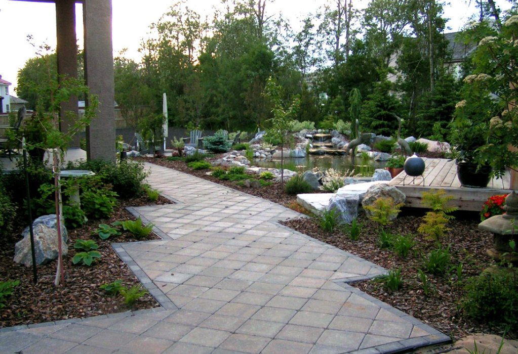 Backyard Landscape Contractor and Design