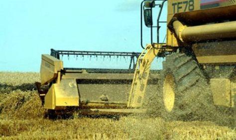 PRESION. La AFIP aumenta las exigencias tributarias sobre los productores de granos.