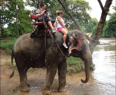 Ride an Elephant!!!