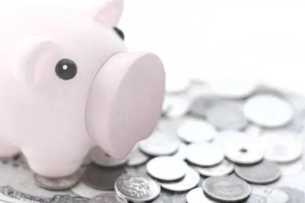 豚の貯金箱 お金 小銭