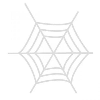 蜘蛛の夢占い★その意味が凶夢の時の6つの診断