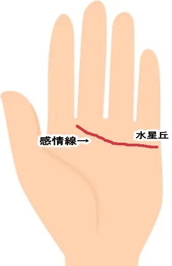 恋愛運が良い手相9位 感情線が人差し指と中指の間へ伸びている