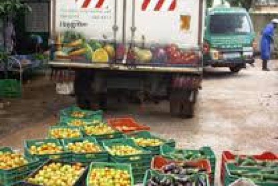 Key Exports of Gambia