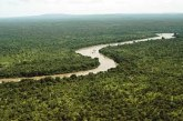 Natural Resources of Gambia
