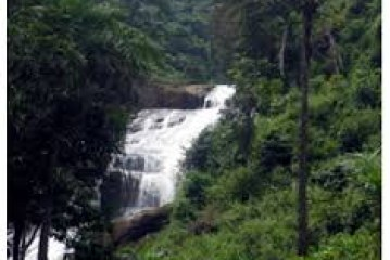 Natural resources of Sierra Leone