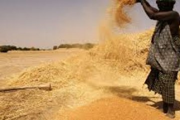 Investment Opportunities in Mali