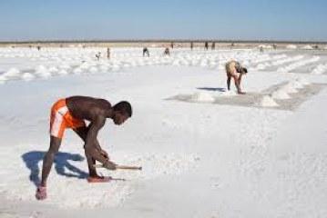 Natural resources of Madagascar