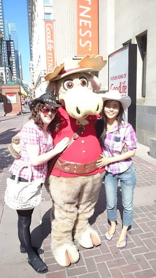 Cowgirl In Cowtown All The Fun You Could Have At Calgary