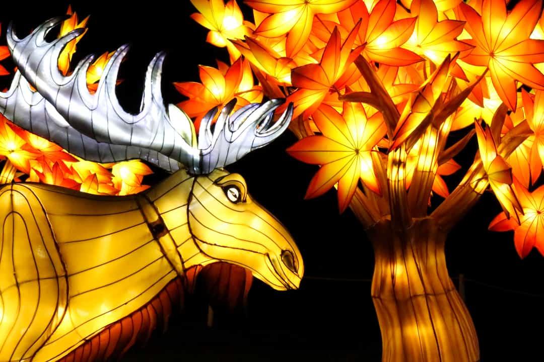 Calgary Zoo Illuminasia, a lantern and garden festival