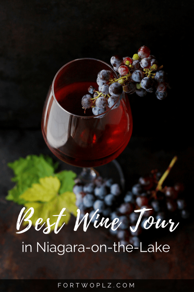 Want a little red or white on your Niagara Falls vacation? Join the top Niagara wine tasting tour and awake your senses with the award-winning Icewines!