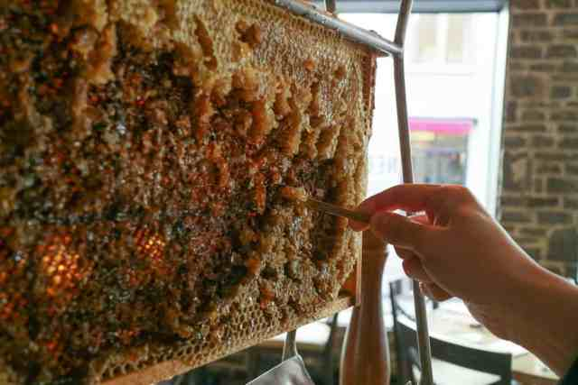 Quebec City Food Tour Honey Beehives