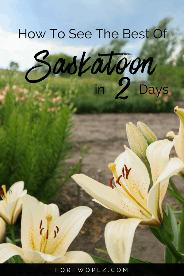 Saskatoon Canada is the perfect Canadian destination for a quick summer getaway. This 2-day itinerary highlights the top things to do and best places to eat in Saskatoon!. Click through to find out more on For Two, Please. #saskatoon #saskatchewan #Canada #newlyweds #couplestravel #travelcanada #travelguide #tripplanning #traveltips #itinerary #thingstodo #traveldestinations #summertravels #instagramspots