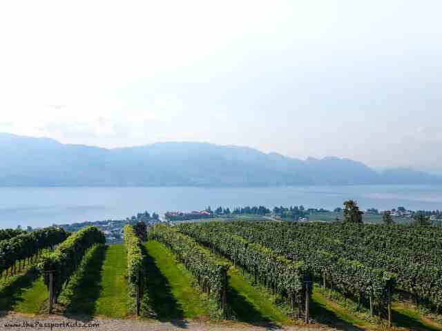 best wineries in kelowna