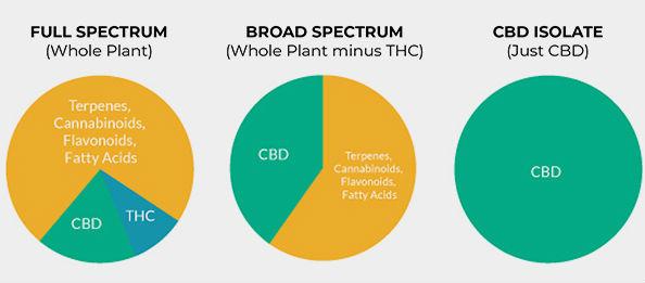 broad spectrum cbd oil tincture - full spectrum cbd oil tincture