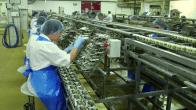 De l'art et du cochon arte conserverie sardines à l'huile