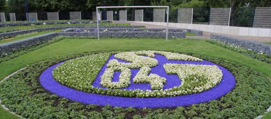 Schalke Fan Feld
