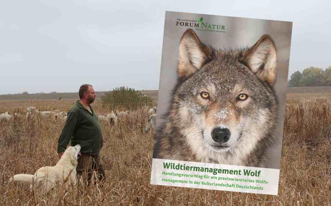 Neue Wege im Wolfsmanagement gehen!