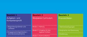 bausteine ehrenamt deutscher verein 2016