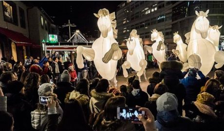 L'espectacle Fiers a Cheval