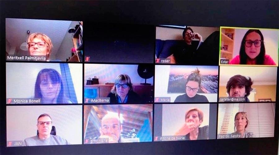 Consellers generals demòcrates treballen mitjançant una videoconferència