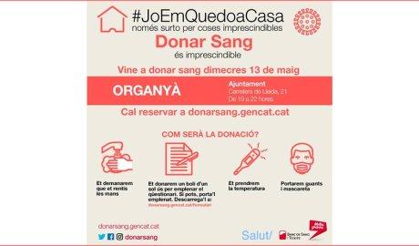 Cartell de la campanya especial de donació de sang a Organyà